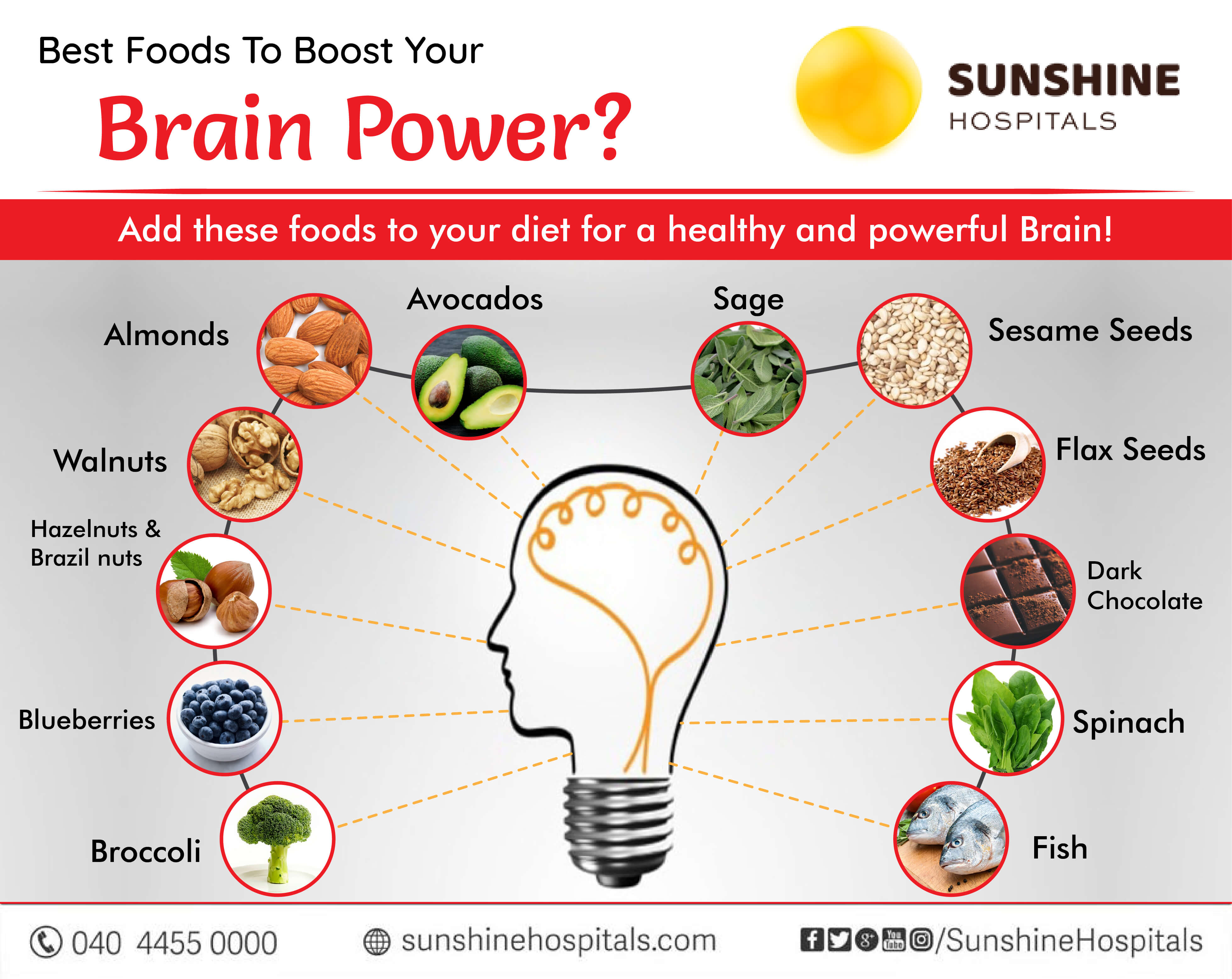 Which Foods are best To Boost Your Brain Power?